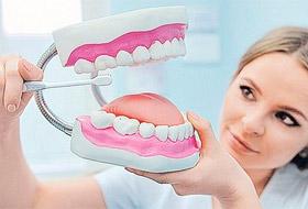 Как правильно ухаживать за зубами – советы стоматолога